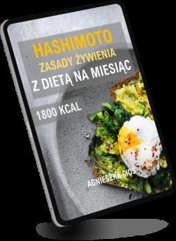 hashimoto-mockup